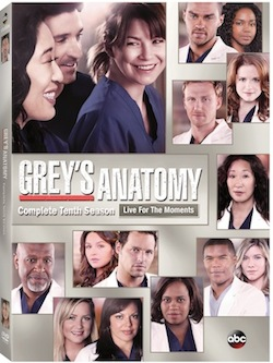 GreysAnatomySeason10DVD_copy[1]